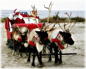 Santa-Claus-reindeer-deer-sled-present-christmas-xmas-water-north-pole-toy